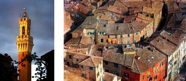 Siena views