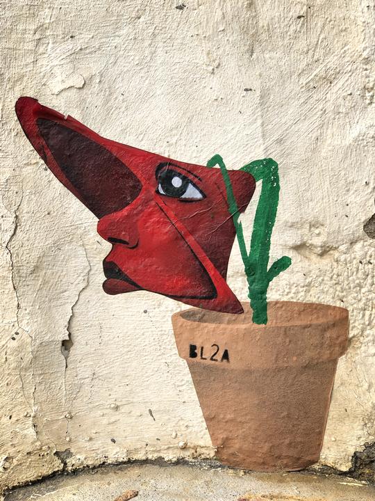 BL2A Flower