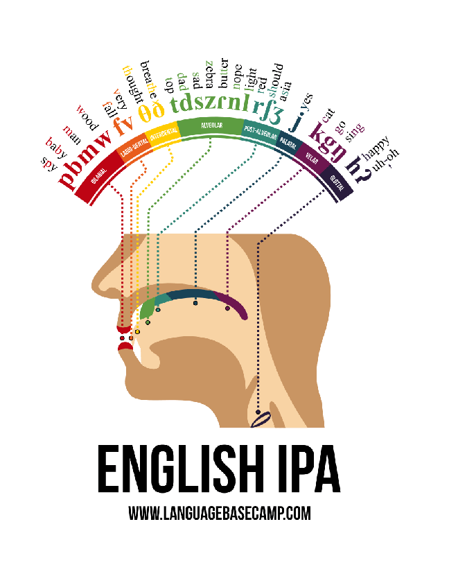 English IPA Infographic