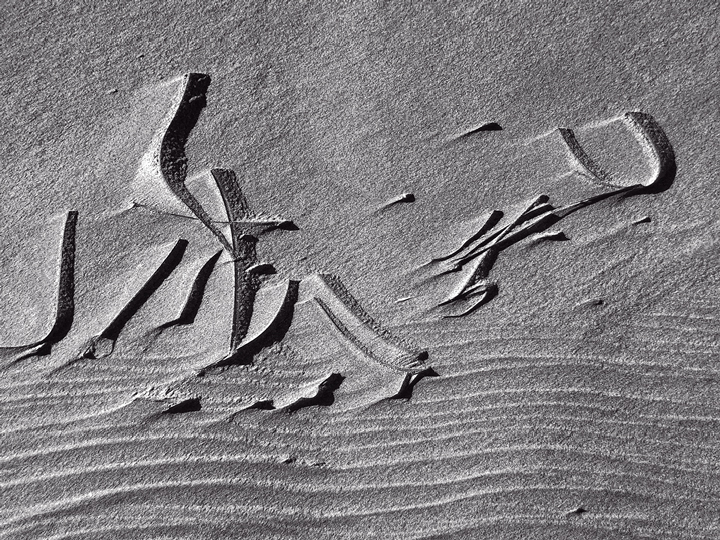 Beach Calligraphy 1