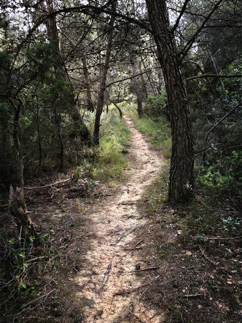 Garrigue Trail
